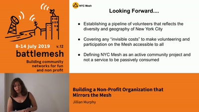 Building a Non-Profit Organization that Mirrors the Mesh