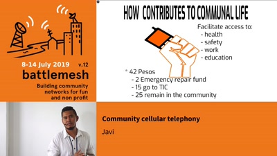 Community cellular telephony